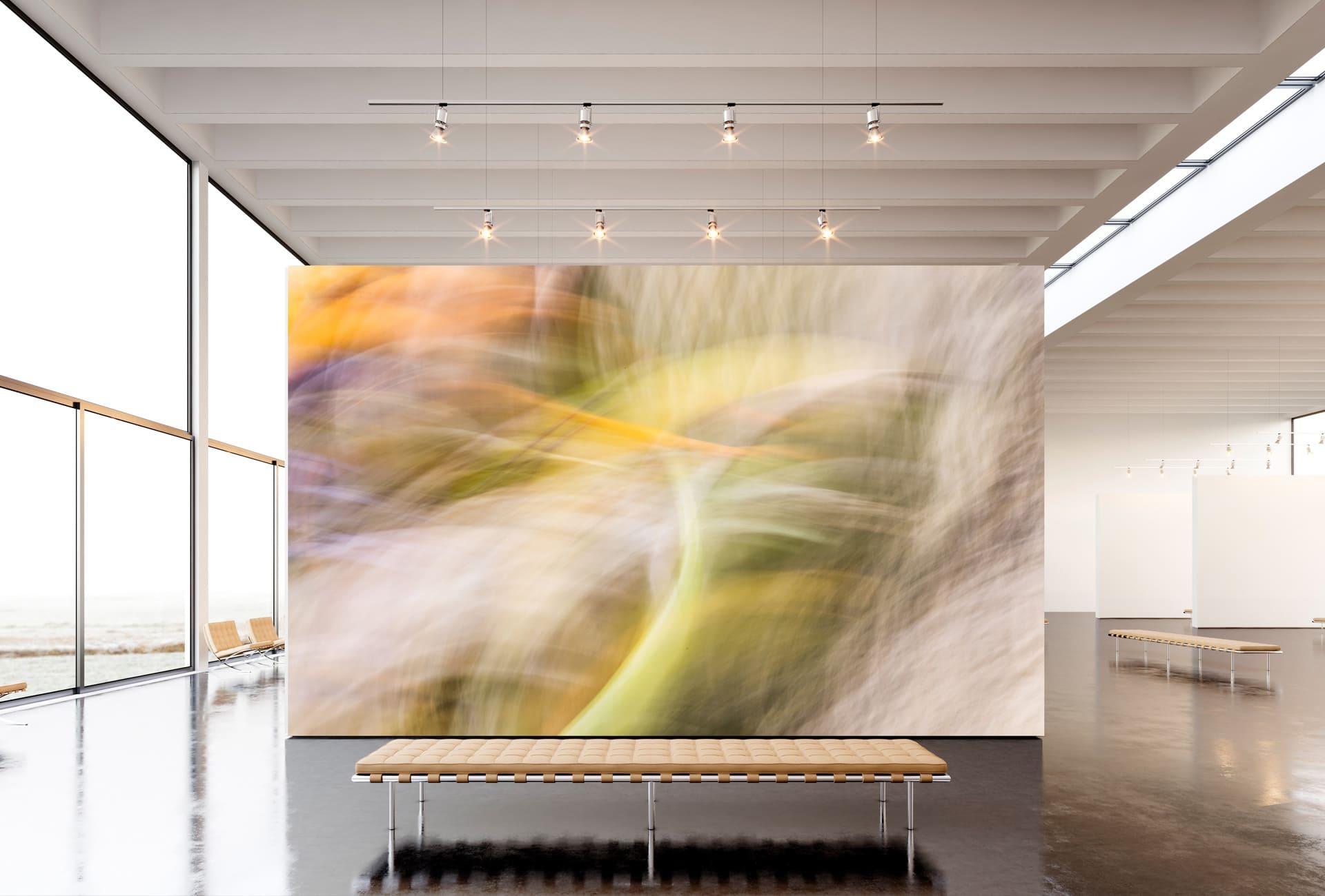 simoarts-com-simone-kessler-fotokunst-nuernberg-blumen-abstrakt-Motiv08